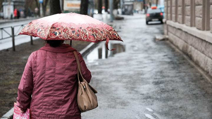 МЧС предупредило об усилении ветра в Пермском крае