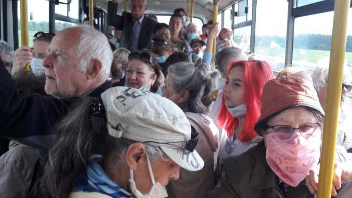 «Удивляет количество маршруток»: Хабирову вновь пожаловались на транспортную реформу