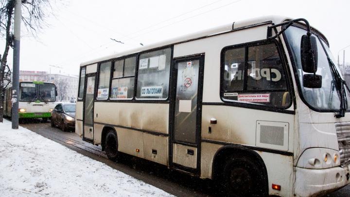 Автобусы будут большие? Почему поменяли номера маршрутов? Власти ответили на вопросы о транспортной реформе в Ярославле
