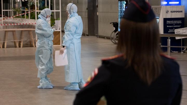 Сальск обогнал Ростов по приросту заболевших COVID-19. В области выявили еще 301 случай инфекции