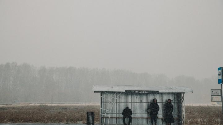 Умных и теплых остановок в Тюмени пока не будет. Проект заморожен