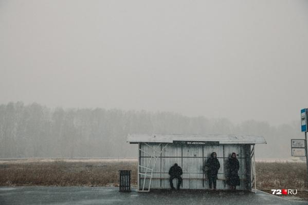 Пока в Тюмени самые обычные остановки, они защищают от дождя, но не от холода