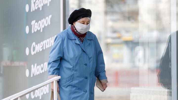 Где волгоградским пенсионерам получить маску и перчатки: адреса и телефоны пунктов выдачи, график работы