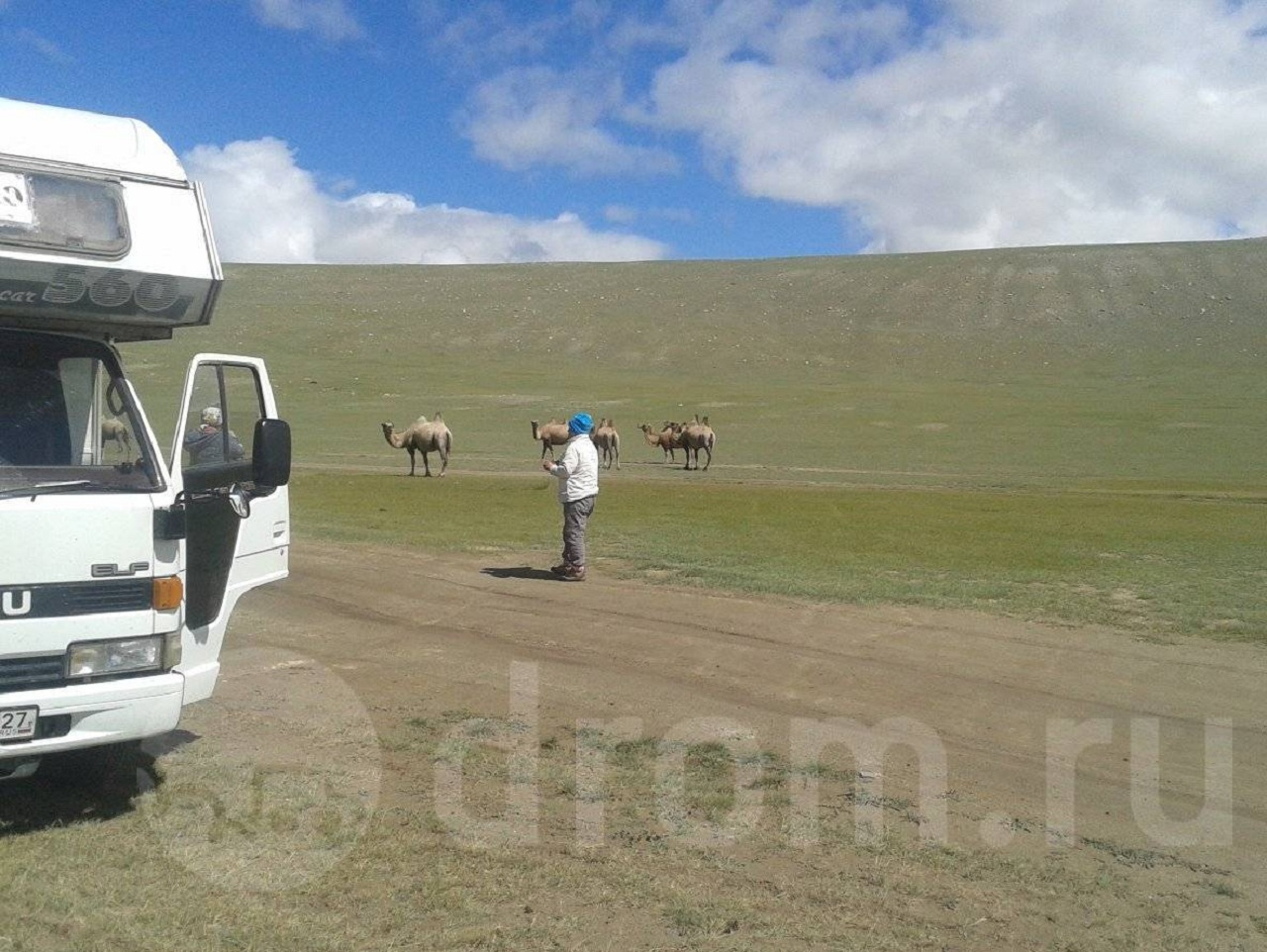 В Монголии автодом спокойно обгонял верблюдов