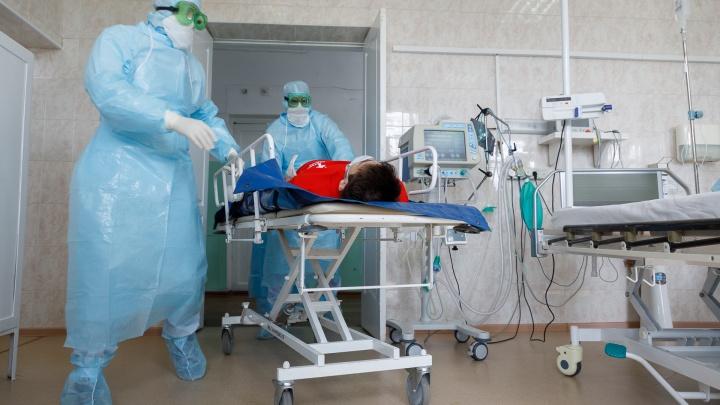 За сутки увеличилось количество тяжелых пациентов с COVID-19 в Ярославской области