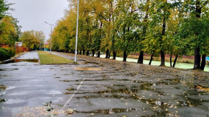 В Кургане на этой неделе пройдут дожди, но к выходным потеплеет
