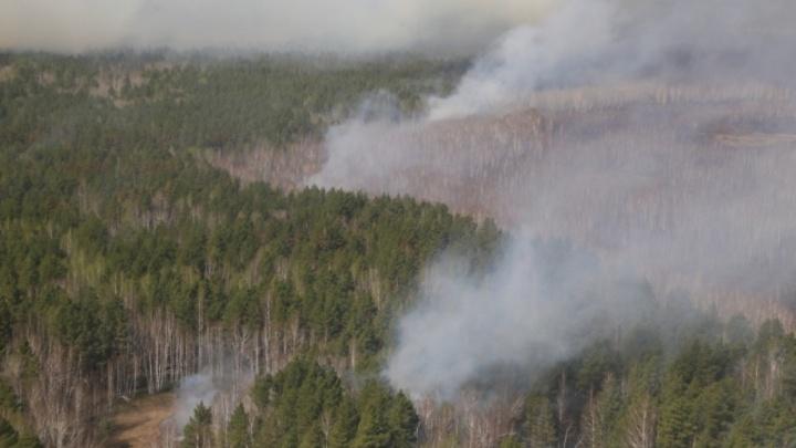 В Зауралье 127 объектов признаны подверженными угрозе природных пожаров