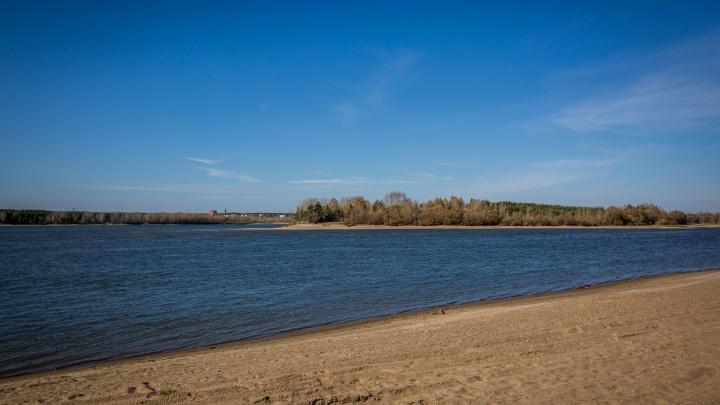 Течение принесло тело мужчины к берегу рядом с Заельцовским парком — следователи начали проверку