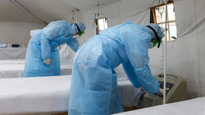 Их стало больше тысячи: в Волгоградской области — +74 человека с коронавирусной инфекцией