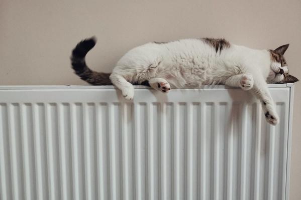 """По действующим нормативам, тепло должно быть подано во все объекты, когда среднесуточная температура воздуха в течение <nobr class=""""_"""">5 дней</nobr> не превышает +8 градусов тепла"""