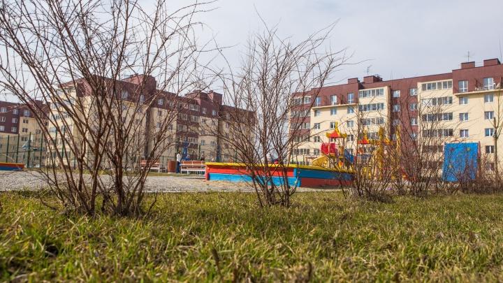 В Новосибирске ждут деньги на строительство двух новых школ — где их планируют построить