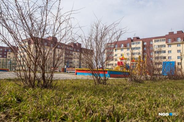 Одну из школ планируют построить в микрорайоне «Дивногорский»