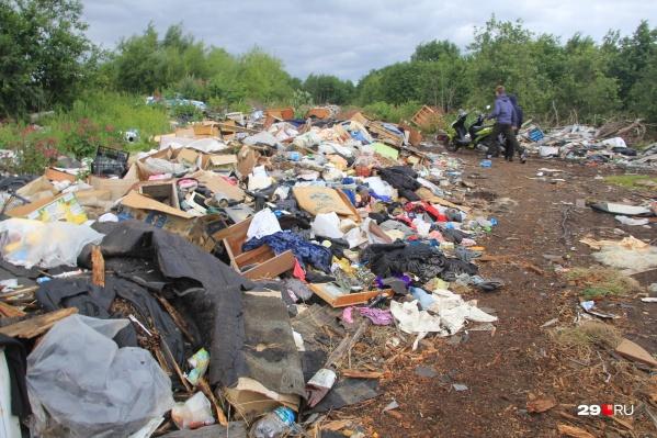 Свалка расположена на полях, куда свозили мусор жители окрестных деревень