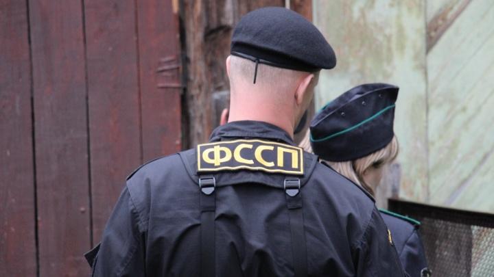 В Прикамье судебные приставы забрали у матери пятерых детей