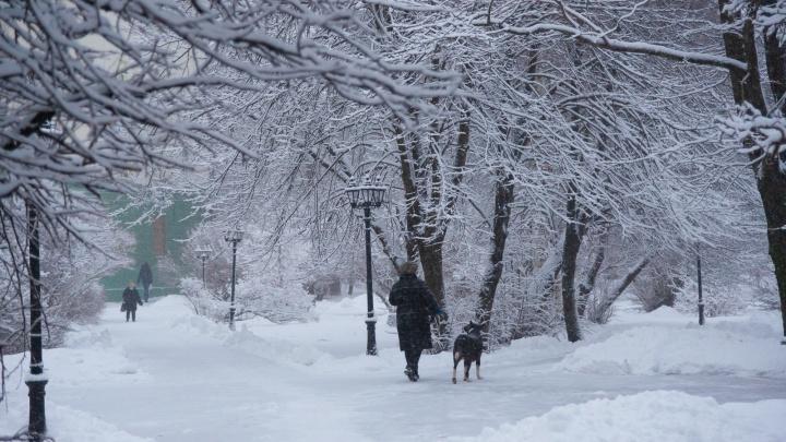 Придет настоящая зима: какая погода ждет северян в последние выходные 2020 года