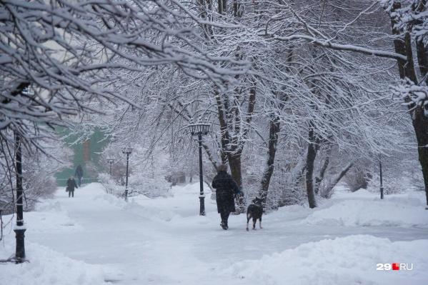 Снег и значительный минус на градуснике — такую погоду предсказывают на ближайшие дни синоптики<br>