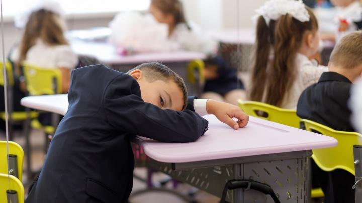 «Звоните на следующей неделе»: волгоградские школы затаились в ожидании 20 сентября