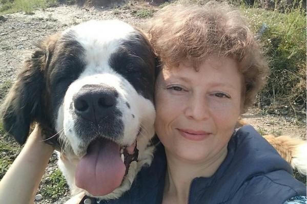 Истощенного сенбернара Ольга нашла недалеко от своего дома — пес лежал в канаве без каких-либо надежд на лучшую жизнь