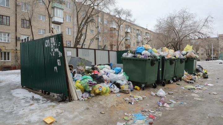«Платежки идут регулярно»: оставшиеся без УК многоэтажки на севере Волгограда зарастают грязью и мусором