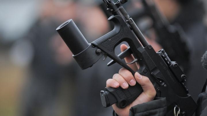 В России предложили повысить возраст владения оружием из-за трагедии на Бору