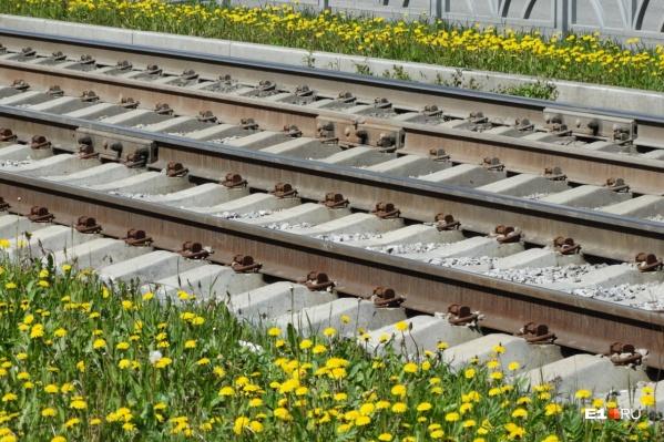 Ограничения связаны с ремонтом трамвайных путей