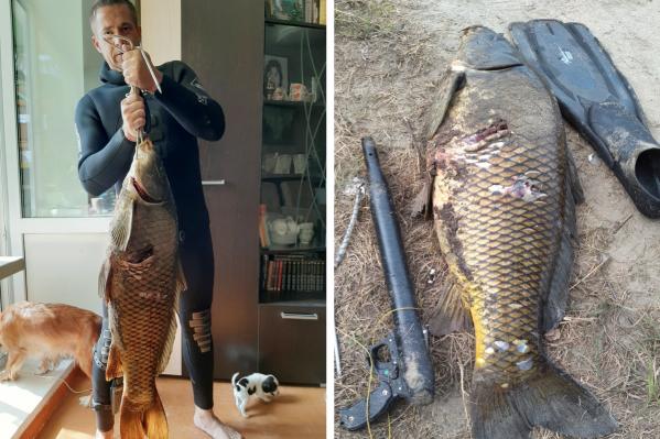 Рыба весит 15 кило и с трудом умещается на фотографиях