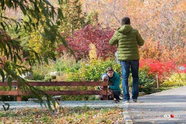 Парк будет открыт для прогулок 4 дня в неделю