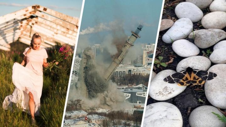 Весна глазами читателей E1.RU: подборка фото о семье, природе и сносе телебашни