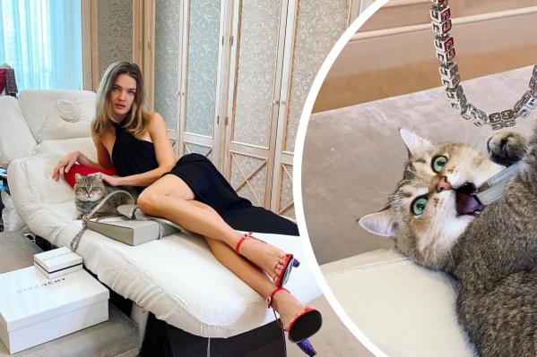 Водянова опубликовала фото с бесконечными ногами, но все в восторге от ее  кота | Новости NN.RU