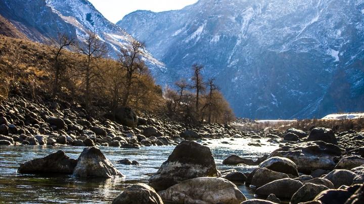 Турист из Новосибирска погиб во время сплава на Алтае — ещё пять человек застряли в горах