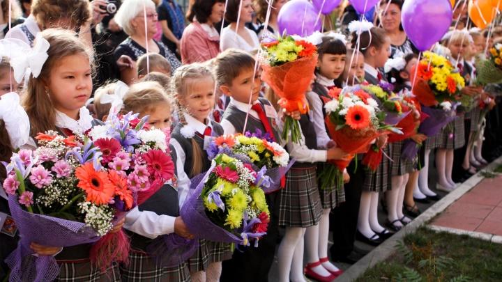 Новосибирских младшеклассников будут кормить обедом бесплатно — куда пожаловаться, если требуют денег