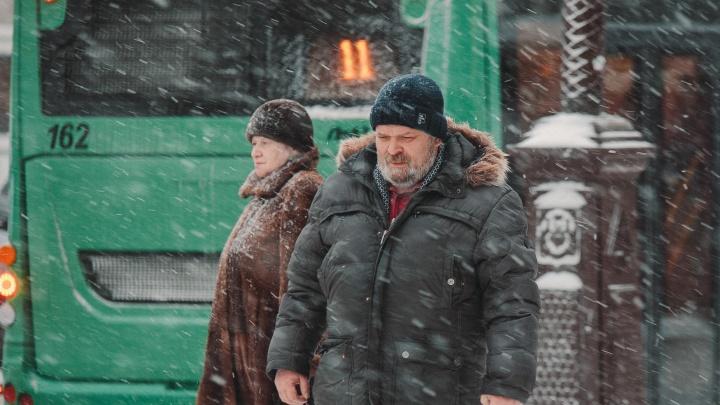 Не лучшая погода для праздника: в Тюменскую область 8 марта придет непогода