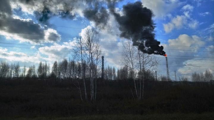 Минприроды объяснило появление факела и черного дыма на территории «Полиома»