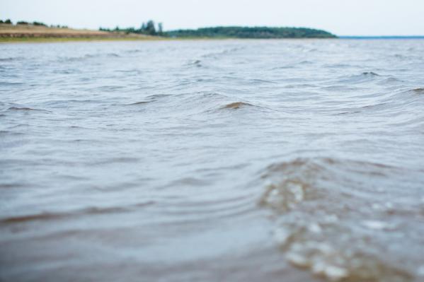В Ярославской области Волга выйдет из берегов