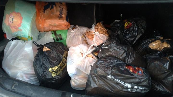 В Перми поисковый отряд в период самоизоляции доставляет продукты и лекарства малоимущим и пенсионерам