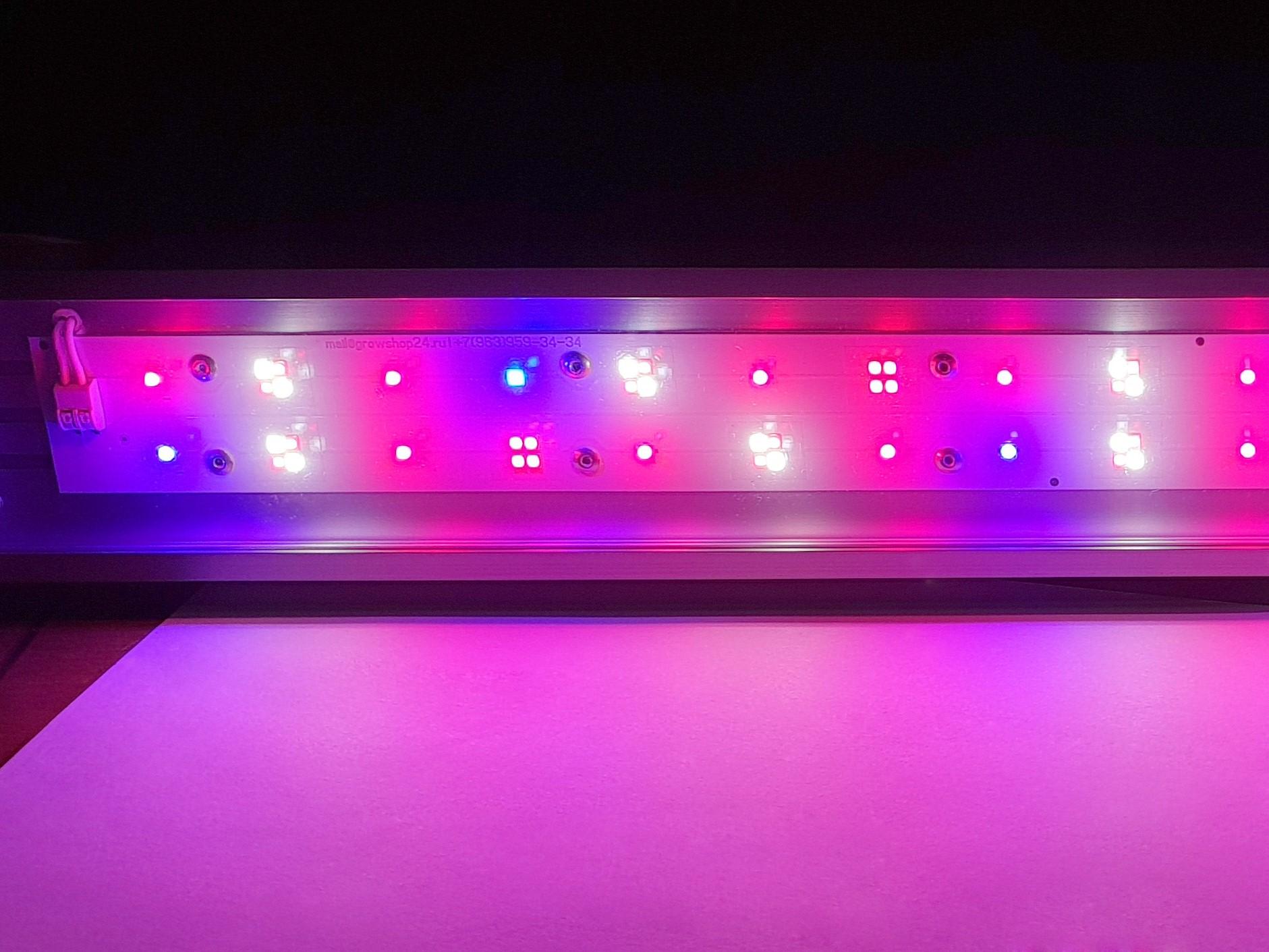 Светодиоды в фитосветильнике подобраны специальным образом для достижения максимального эффекта