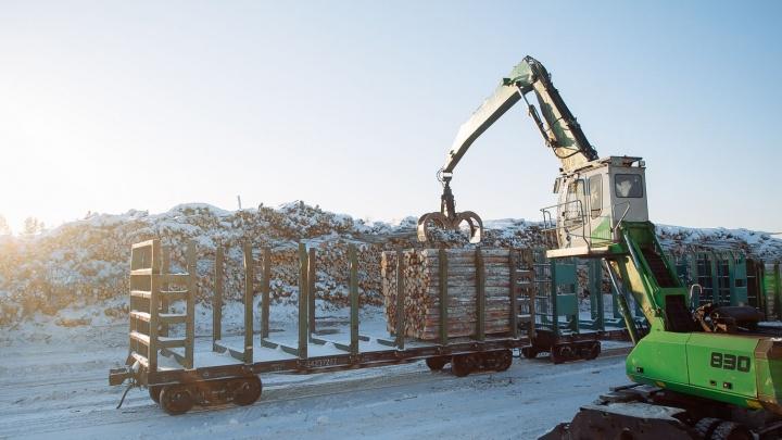 С начала года «Архбум» увеличил количество железнодорожных грузоперевозок