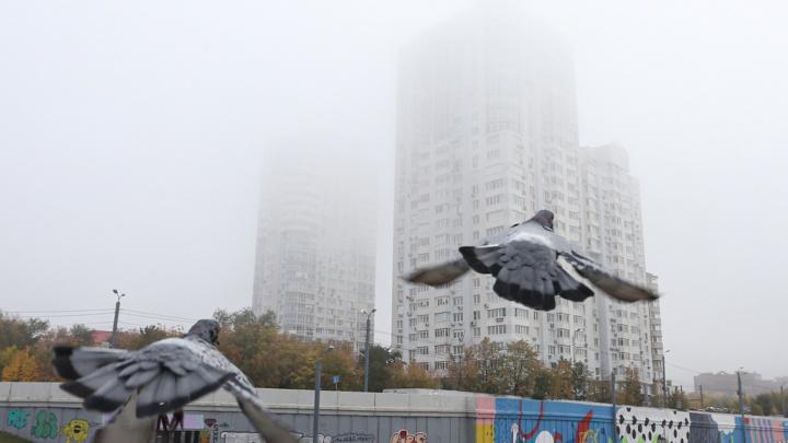 Туман не рассеивается и задерживает самолёты из Челябинска, но город красив. Любуемся осенними фото