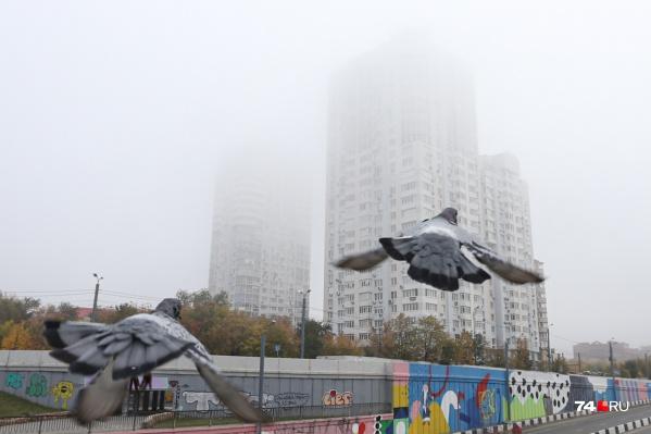 Из-за тумана в Челябинске сегодня нелётная погода
