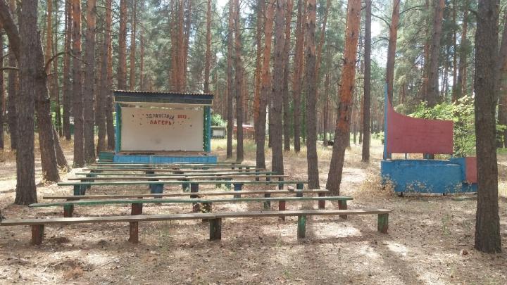 Забытый в сосновом лесу: показываем закрытый элитный детский лагерь под Волгоградом