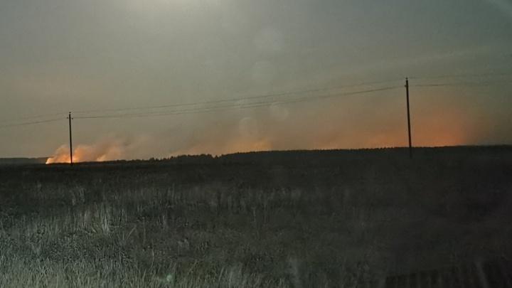 «Огонь перекинулся через реку»: в Волгоградской области горят пойменные леса Хопра