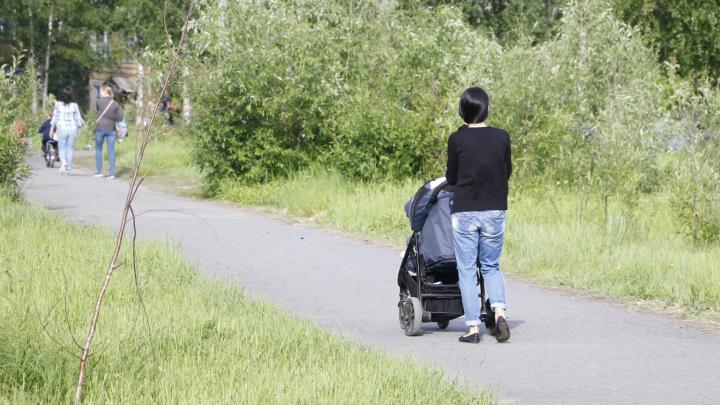 Месяц на сбор документов: когда в Архангельске нужно продлевать статус малоимущего