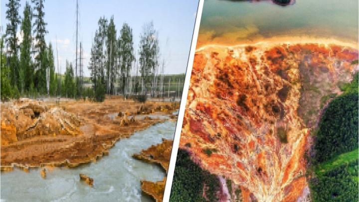 После материала E1.RU власти области обнародовали план по спасению природы возле Лёвихинского рудника