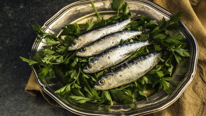 Морские деликатесы на завтрак, обед и ужин: «Первый рыбный» предложил тюменцам новые акции