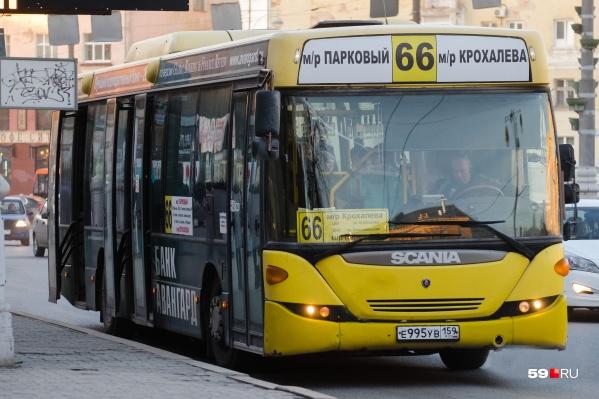 В новой маршрутной сети этих автобусов нет