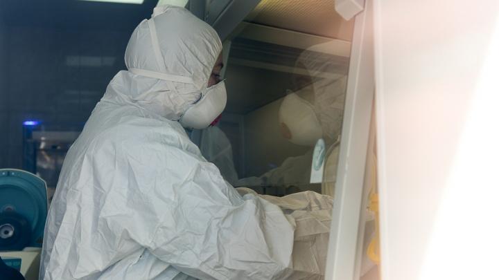 В Самаре выросло число заболевших коронавирусом