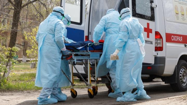 В Волгоградской области проверяют на коронавирус 549 человек