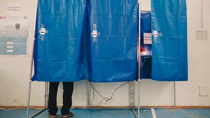 В двух тюменских деревнях не состоялись выборы: кандидаты умерли