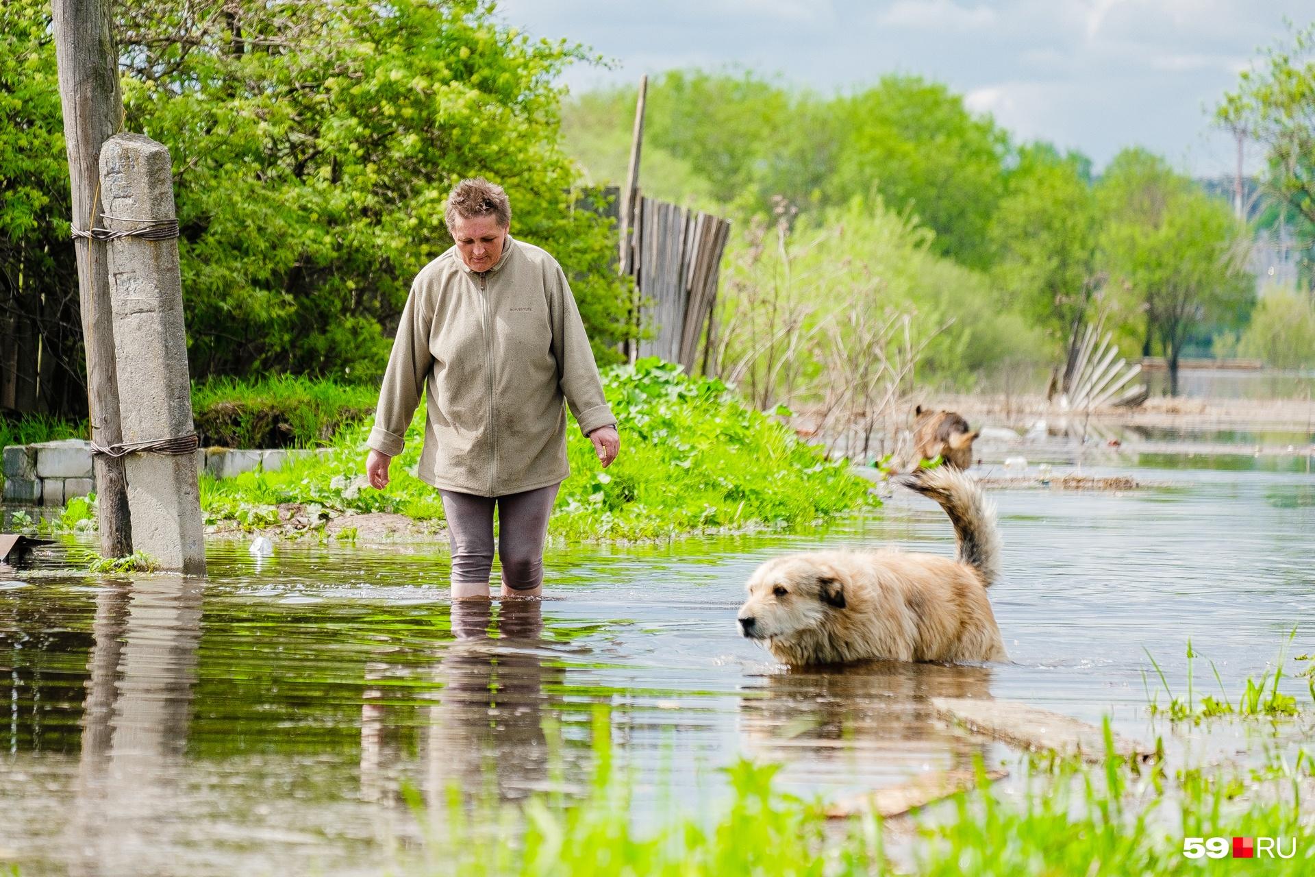 Ольга и ее пес — кажется, воды он совсем не боится