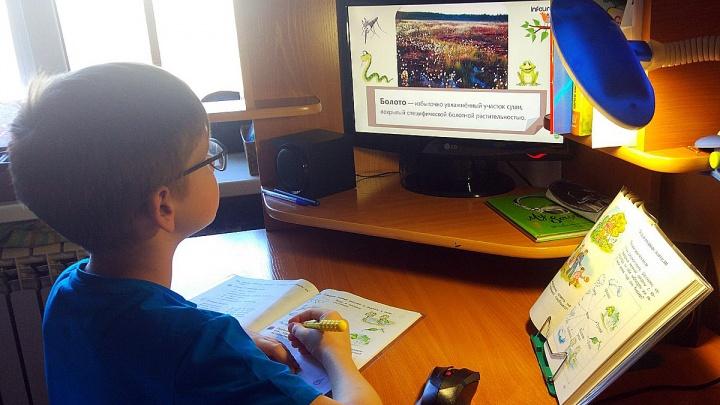 «Ощущения изоляции возникнуть не должно»: красноярских школьников перевели на дистанционку